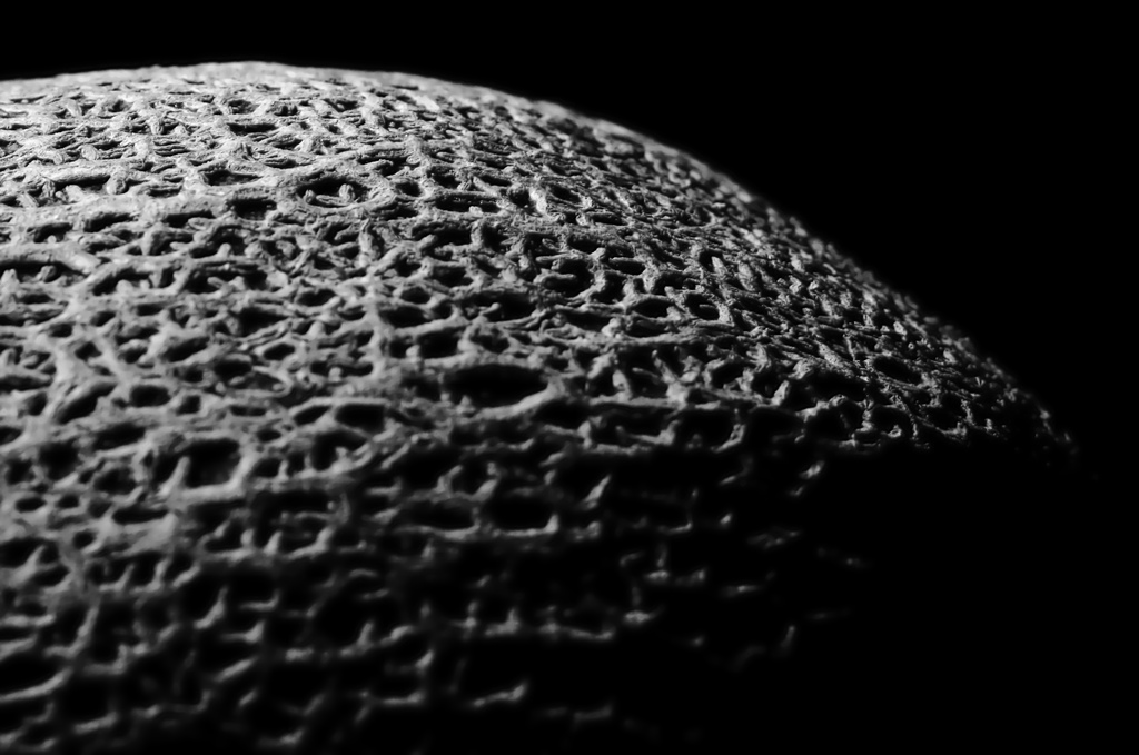 Canteloupe Surface by Jon Fife / Flickr https://flic.kr/p/3gkyRW CC BY-SA 2.0 https://creativecommons.org/licenses/by-sa/2.0/